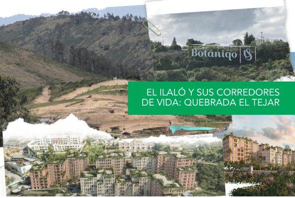 EL ILALÓ Y SUS CORREDORES DE VIDA: QUEBRADA EL TEJAR